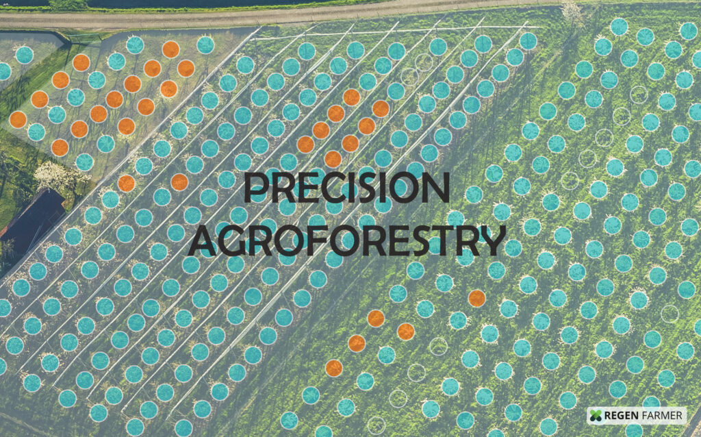 Precision Agroforestry software technology image with digital twin trees shown